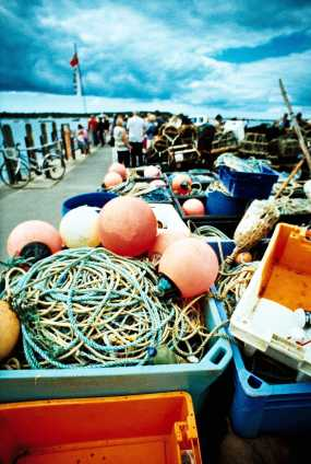 Fishing equipment in Mudeford