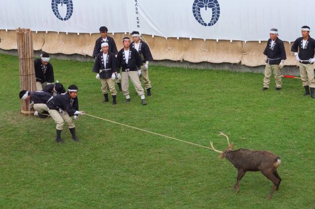 Nara antler cutting
