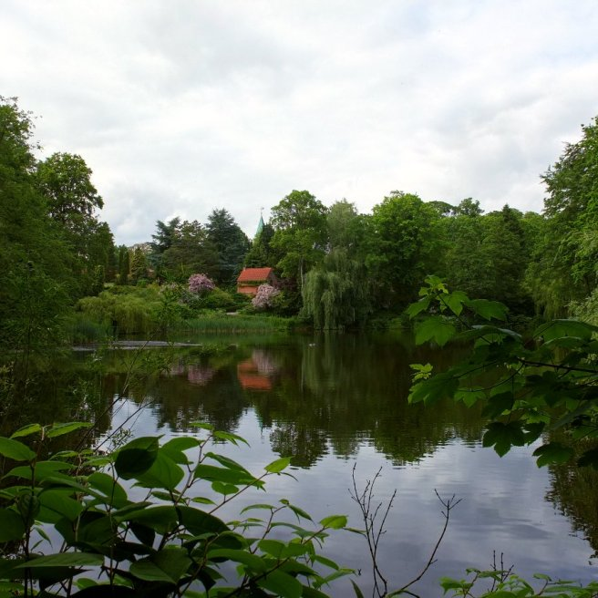 louisiana-lake